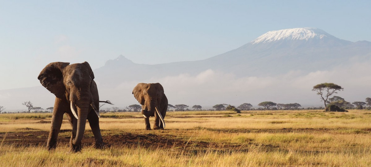 kenya-landscape-2