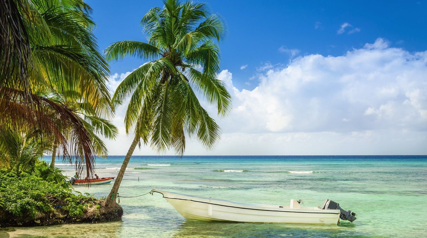 Beautiful_beach_with_palm_trees_and_moored_fishing_boat