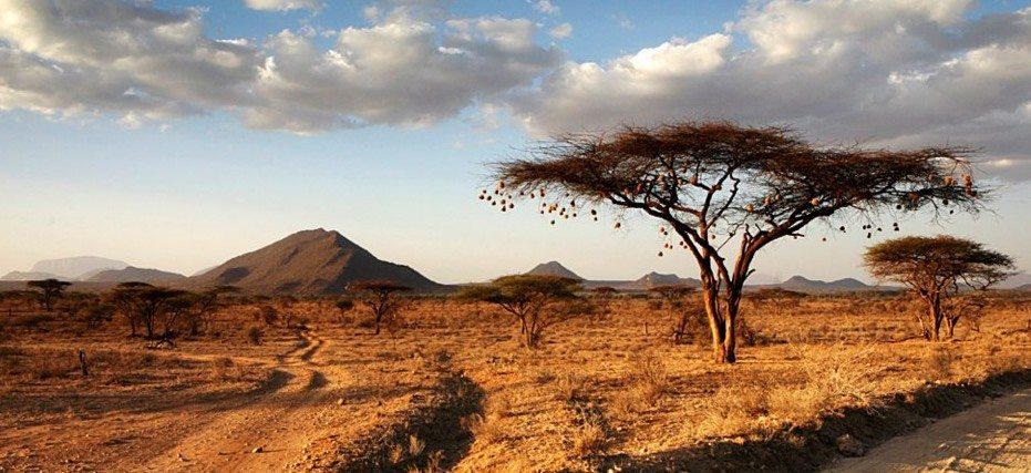 kenya-landscape-1